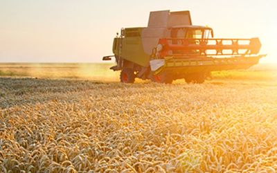 Import duties on sugar and wheat revised